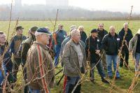 2011-11-26_Schnittkurs_Beerenschnitt_Siegle_02