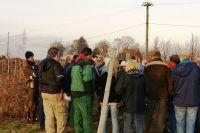 2011-11-26_Schnittkurs_Beerenschnitt_Siegle_13