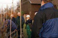 2011-11-26_Schnittkurs_Beerenschnitt_Siegle_18