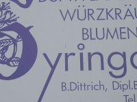 2007-06-11_Lehrfahrt_Sipplingen_469