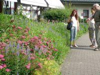 2007_Lehrfahrt_Elsass_225