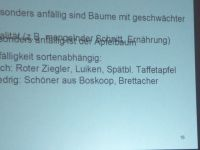 Veranstaltung_Mistelproblem_Ochsenbach_2017_042